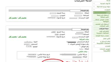 استعلامات الخطوط السعودية رقم خدمة العملاء خ زنة