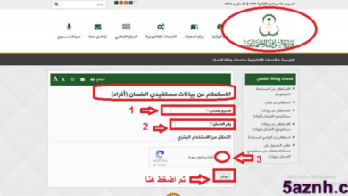 Photo of الاستعلام عن الضمان الاجتماعى برقم الطلب