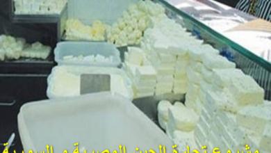 Photo of مشروع تجارة الجبن المصرية و السورية