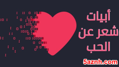Photo of شعر عن الحب