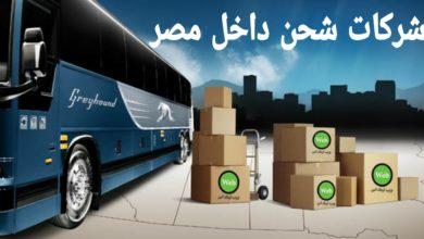 شركات شحن داخل مصر