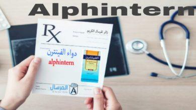 Photo of Alphintern