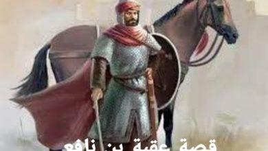 Photo of قصة عقبة بن نافع