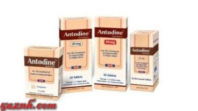Antodine