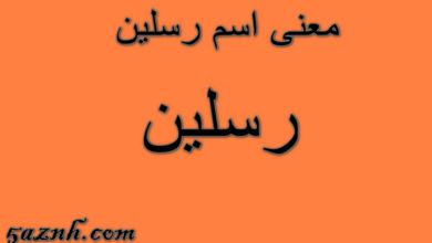 Photo of معنى اسم رسلين