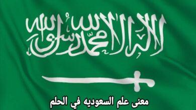 معنى علم السعوديه في الحلم