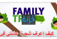كيف اعرف شجرة عائلتي في مصر